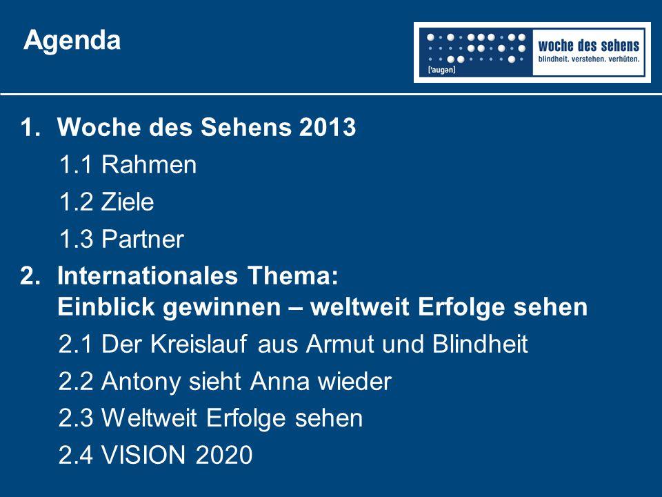 Agenda 1.Woche des Sehens 2013 1.1 Rahmen 1.2 Ziele 1.3 Partner 2.Internationales Thema: Einblick gewinnen – weltweit Erfolge sehen 2.1 Der Kreislauf