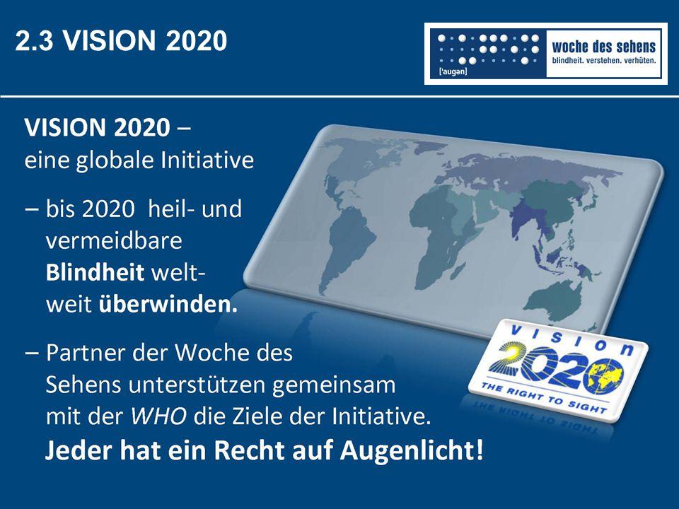 2.3 VISION 2020