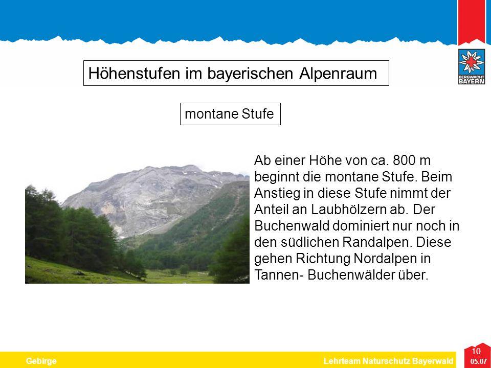 10 05.07 GebirgeLehrteam Naturschutz Bayerwald Höhenstufen im bayerischen Alpenraum Ab einer Höhe von ca. 800 m beginnt die montane Stufe. Beim Anstie