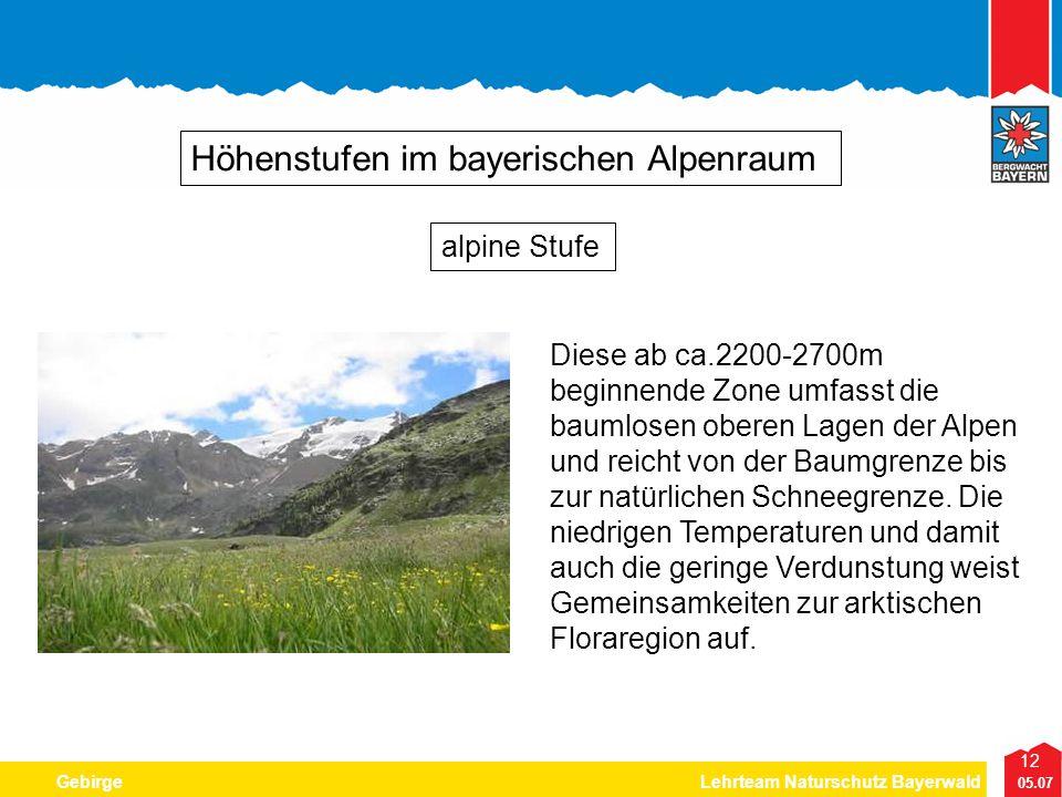 12 05.07 GebirgeLehrteam Naturschutz Bayerwald Höhenstufen im bayerischen Alpenraum Diese ab ca.2200-2700m beginnende Zone umfasst die baumlosen obere