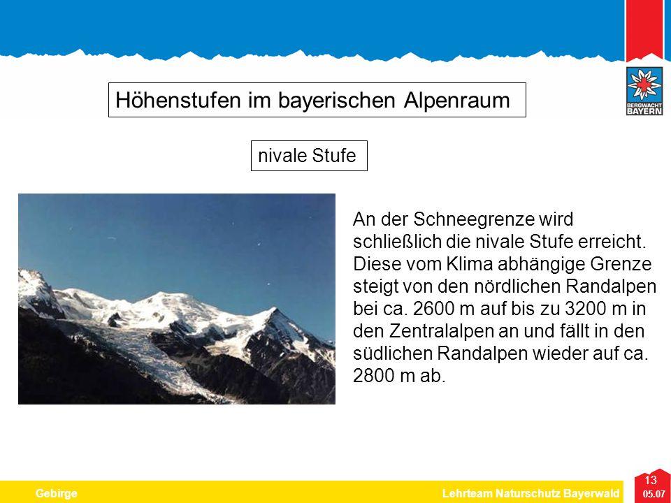 13 05.07 GebirgeLehrteam Naturschutz Bayerwald Höhenstufen im bayerischen Alpenraum An der Schneegrenze wird schließlich die nivale Stufe erreicht. Di