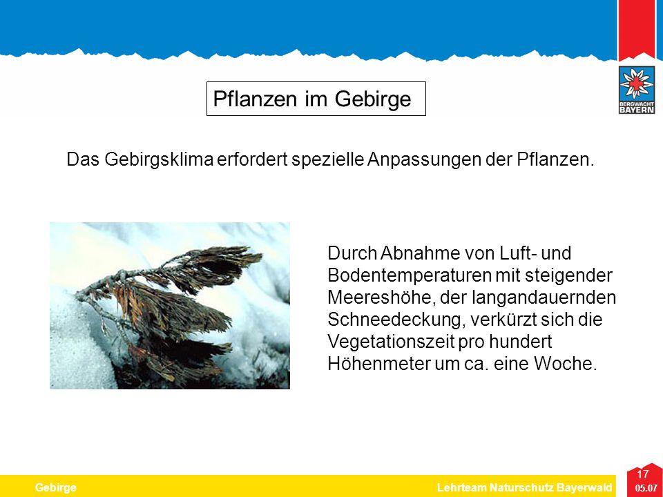 17 05.07 GebirgeLehrteam Naturschutz Bayerwald Pflanzen im Gebirge Durch Abnahme von Luft- und Bodentemperaturen mit steigender Meereshöhe, der langan