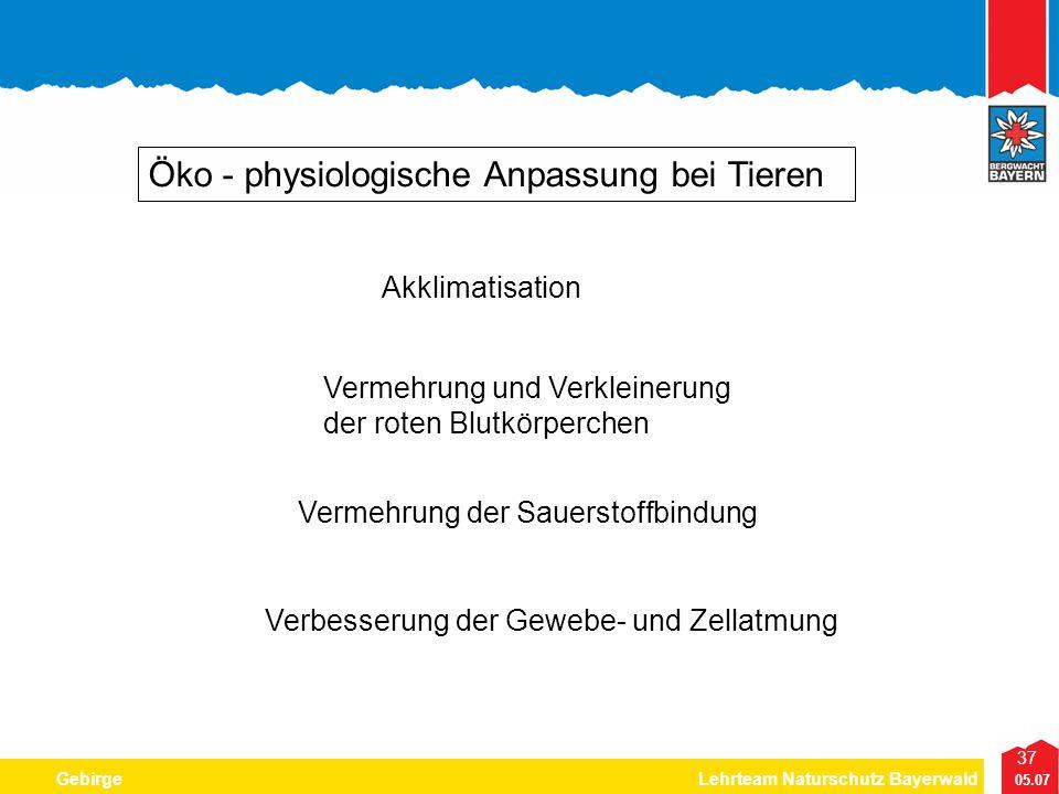37 05.07 GebirgeLehrteam Naturschutz Bayerwald Öko - physiologische Anpassung bei Tieren Akklimatisation Vermehrung und Verkleinerung der roten Blutkö