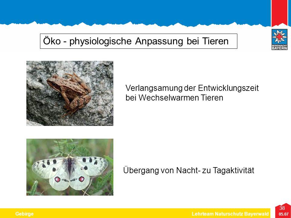 38 05.07 GebirgeLehrteam Naturschutz Bayerwald Öko - physiologische Anpassung bei Tieren Verlangsamung der Entwicklungszeit bei Wechselwarmen Tieren Ü