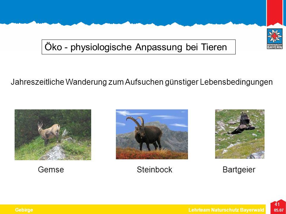 41 05.07 GebirgeLehrteam Naturschutz Bayerwald Öko - physiologische Anpassung bei Tieren Jahreszeitliche Wanderung zum Aufsuchen günstiger Lebensbedin