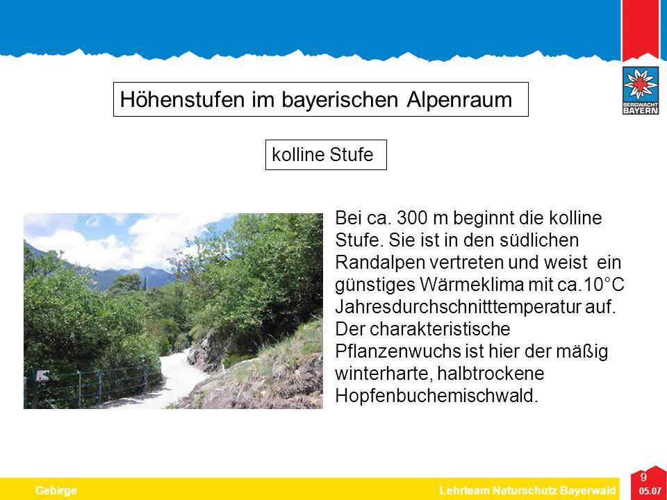 9 05.07 GebirgeLehrteam Naturschutz Bayerwald Höhenstufen im bayerischen Alpenraum Bei ca. 300 m beginnt die kolline Stufe. Sie ist in den südlichen R