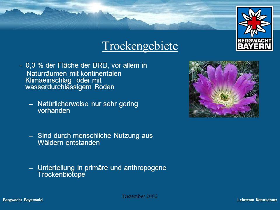 Bergwacht BayerwaldLehrteam Naturschutz Dezember 2002 Trockengebiete auf sauren Böden Unter die Trockengebiete saurer Böden werden gezählt: -Borstgrasrasen, Zwergstrauchheiden -Sandrasen, Felsband- und Felsgrasfluren -Sand und Kiefernwälder