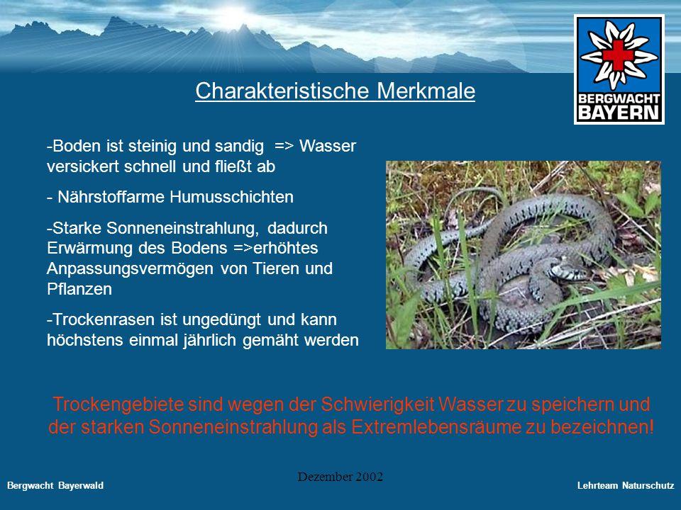 Bergwacht BayerwaldLehrteam Naturschutz Dezember 2002 Trockengebiete in der Bundesrepublik Deutschland