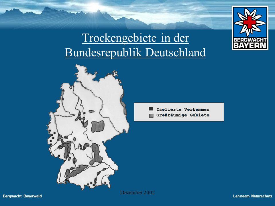 Bergwacht BayerwaldLehrteam Naturschutz Dezember 2002 Primäre Trockengebiete - Dünenbereiche der Küste -Binnendünen vor allem Felsbänder und Köpfe -Steinrasen und Zwergstrauchheiden der subalpinen und alpinen Stufe -Wärmebedürftige Eichenmisch- und Kiefernwälder und ihre Stämme Antrophogene Trockengebiete -Trockenrasen und Wacholderheiden auf Kalkunterlagen - bodensaure Magerrasen und Zwergstrauchheiden - Kiesgruben, Steinbrüche, Sandabbauflächen -Straßenböschungen, Hochwasserdämme - durch Grundwasserabsenkung entstandene Trockenauen bei Flußkorrekturen