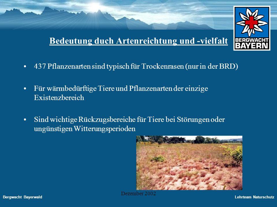 Bergwacht BayerwaldLehrteam Naturschutz Dezember 2002 Gefährdung der Trockenstandorte Die Bestände sind bereits drastisch geschrumpft.