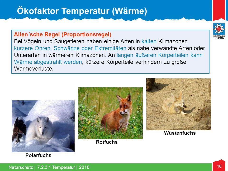Naturschutz | 10 Allen´sche Regel (Proportionsregel) Bei Vögeln und Säugetieren haben einige Arten in kalten Klimazonen kürzere Ohren, Schwänze oder E