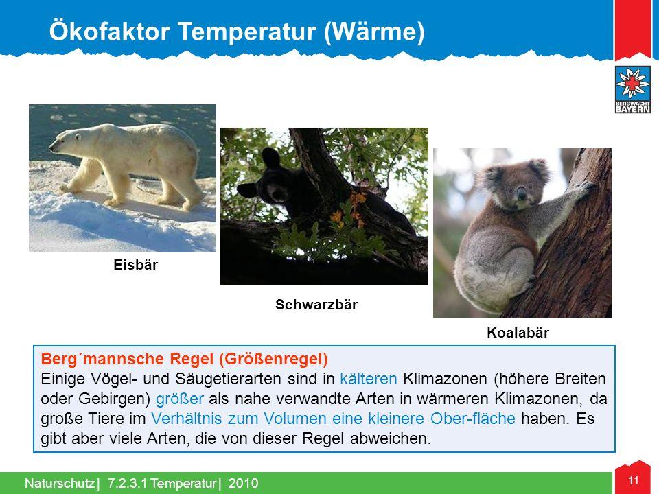 Naturschutz | 11 Berg´mannsche Regel (Größenregel) Einige Vögel- und Säugetierarten sind in kälteren Klimazonen (höhere Breiten oder Gebirgen) größer
