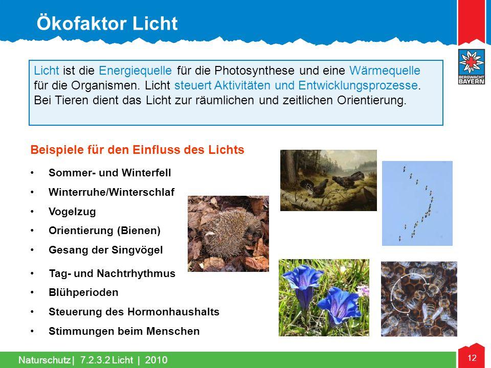 Naturschutz | 12 Licht ist die Energiequelle für die Photosynthese und eine Wärmequelle für die Organismen. Licht steuert Aktivitäten und Entwicklungs