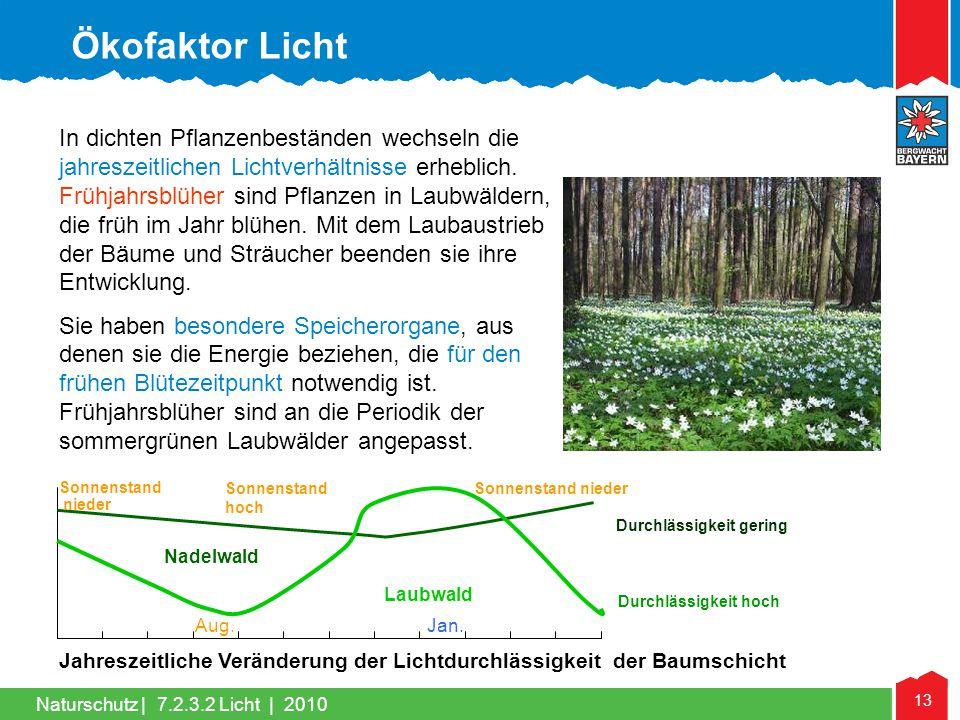 Naturschutz | 13 In dichten Pflanzenbeständen wechseln die jahreszeitlichen Lichtverhältnisse erheblich. Frühjahrsblüher sind Pflanzen in Laubwäldern,