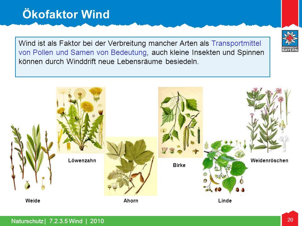 Naturschutz | 20 Wind ist als Faktor bei der Verbreitung mancher Arten als Transportmittel von Pollen und Samen von Bedeutung, auch kleine Insekten un