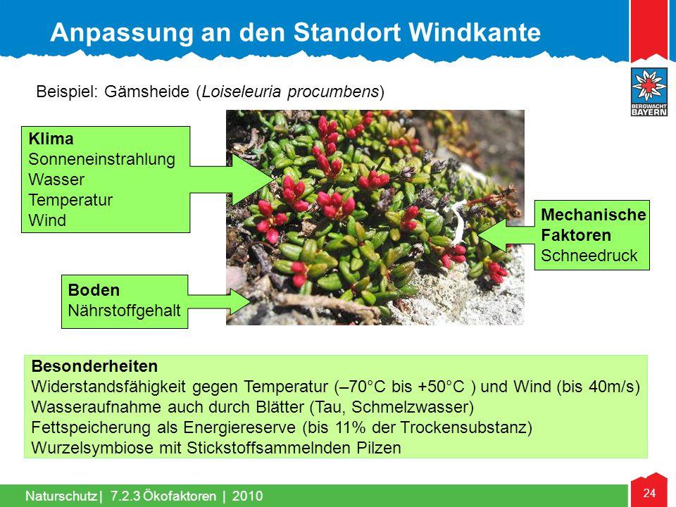Naturschutz | 24 Klima Sonneneinstrahlung Wasser Temperatur Wind Mechanische Faktoren Schneedruck Boden Nährstoffgehalt Besonderheiten Widerstandsfähi