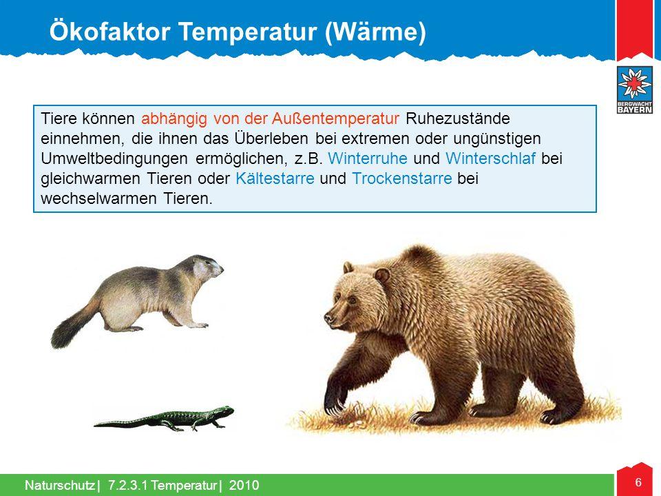 Naturschutz | 6 Tiere können abhängig von der Außentemperatur Ruhezustände einnehmen, die ihnen das Überleben bei extremen oder ungünstigen Umweltbedi