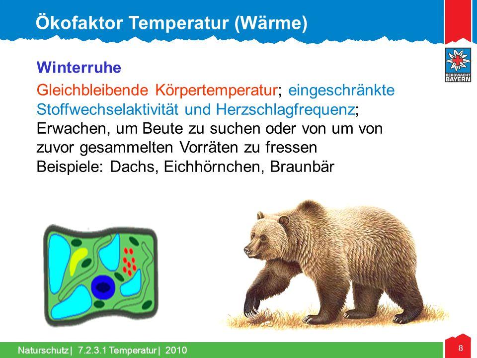 Naturschutz | 8 Winterruhe Gleichbleibende Körpertemperatur; eingeschränkte Stoffwechselaktivität und Herzschlagfrequenz; Erwachen, um Beute zu suchen