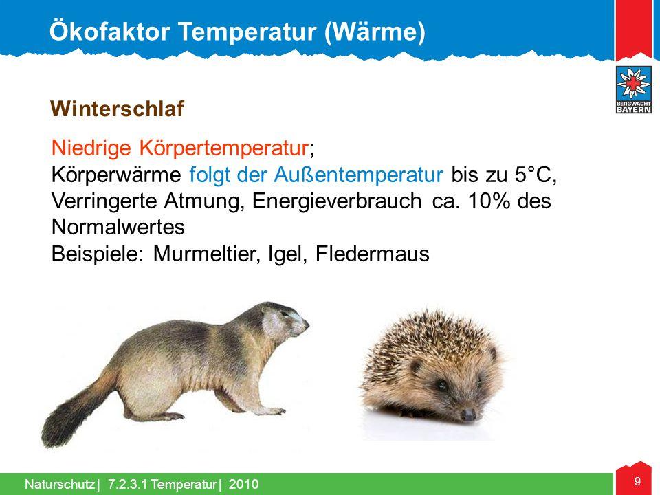 Naturschutz | 9 Winterschlaf Niedrige Körpertemperatur; Körperwärme folgt der Außentemperatur bis zu 5°C, Verringerte Atmung, Energieverbrauch ca. 10%