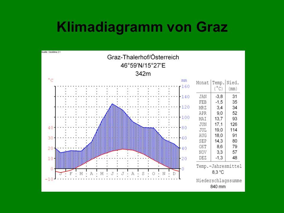Wirtschaft von Graz Günstige Lage Südosten Europas Zentralraum Technologiefabrik Österreichs Städtetourismus Wirtschaftssektoren (Zahl der Beschäftigten 2001) Primärer Sektor 649 Sekundärer Sektor21.539 Tertiärer Sektor89.269