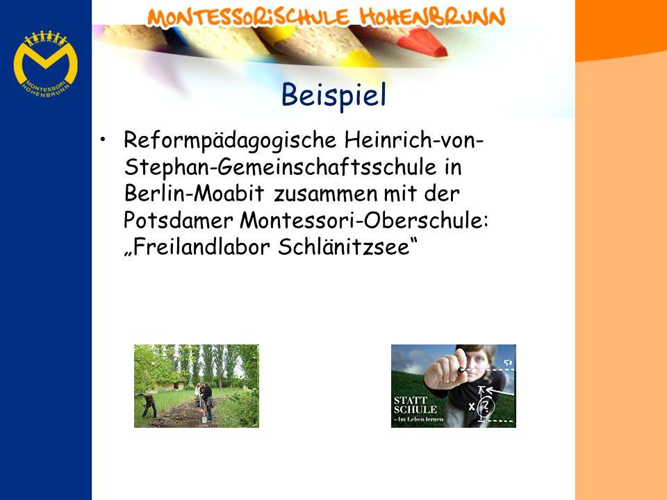 Beispiel Reformpädagogische Heinrich-von- Stephan-Gemeinschaftsschule in Berlin-Moabit zusammen mit der Potsdamer Montessori-Oberschule: Freilandlabor Schlänitzsee