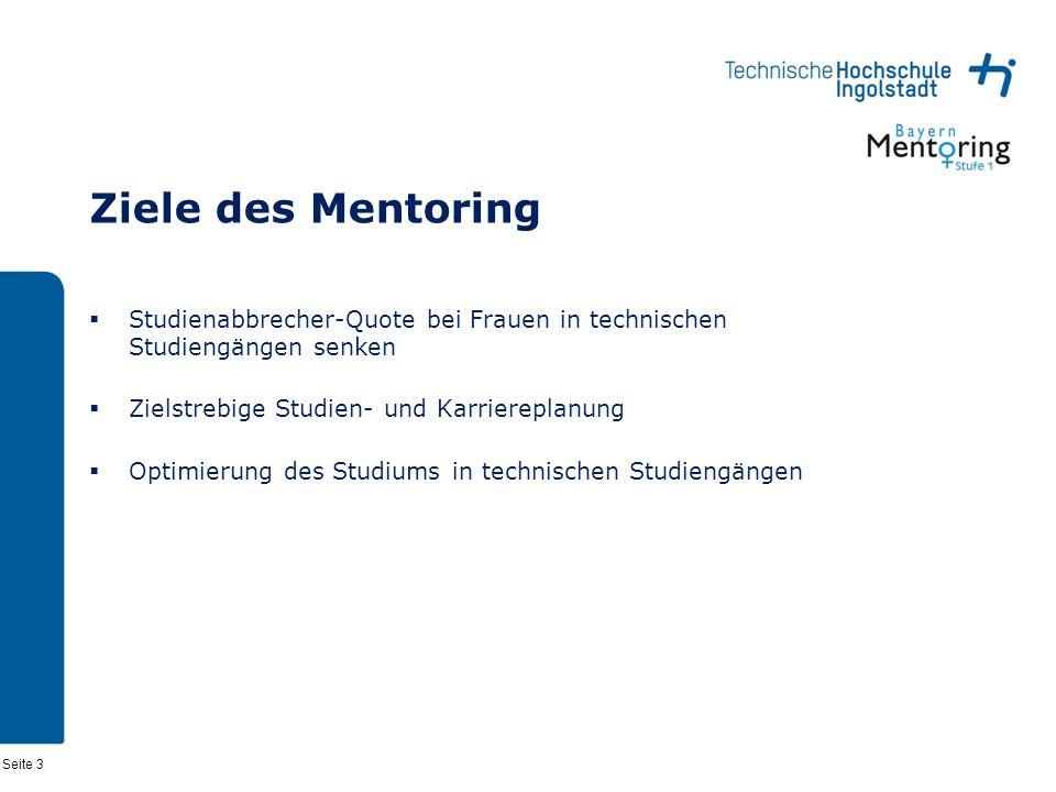 Seite 3 Ziele des Mentoring Studienabbrecher-Quote bei Frauen in technischen Studiengängen senken Zielstrebige Studien- und Karriereplanung Optimierung des Studiums in technischen Studiengängen