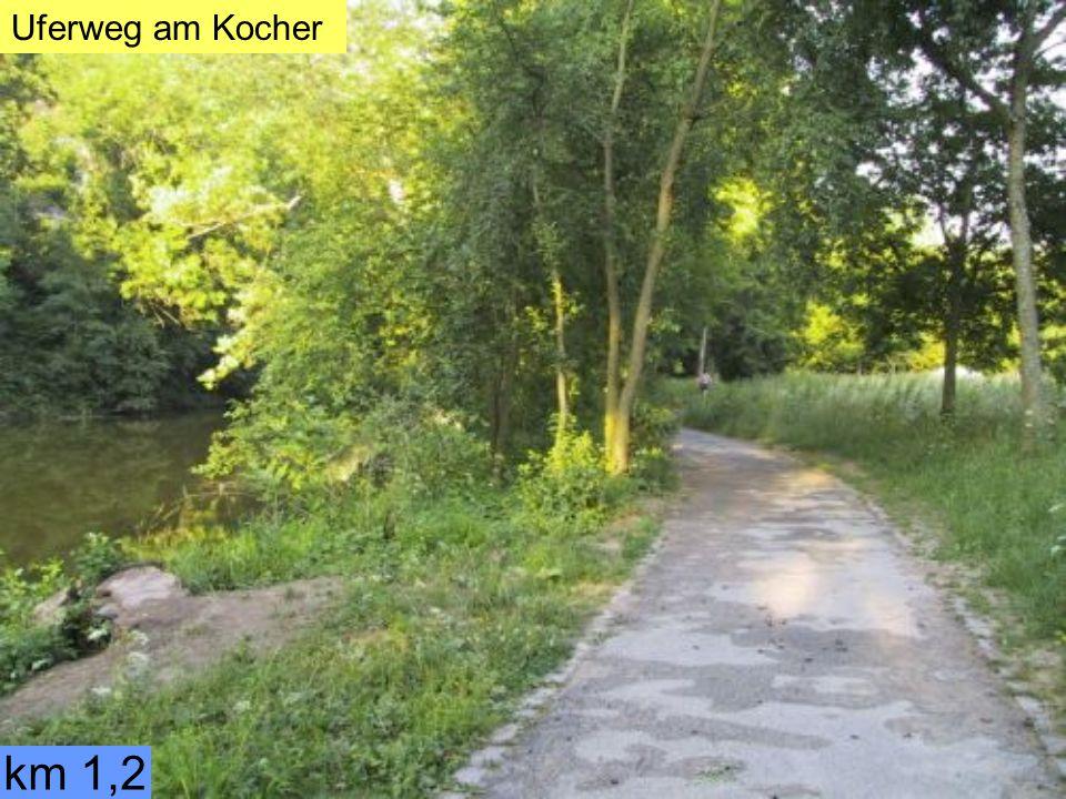 km 1,2 Uferweg am Kocher