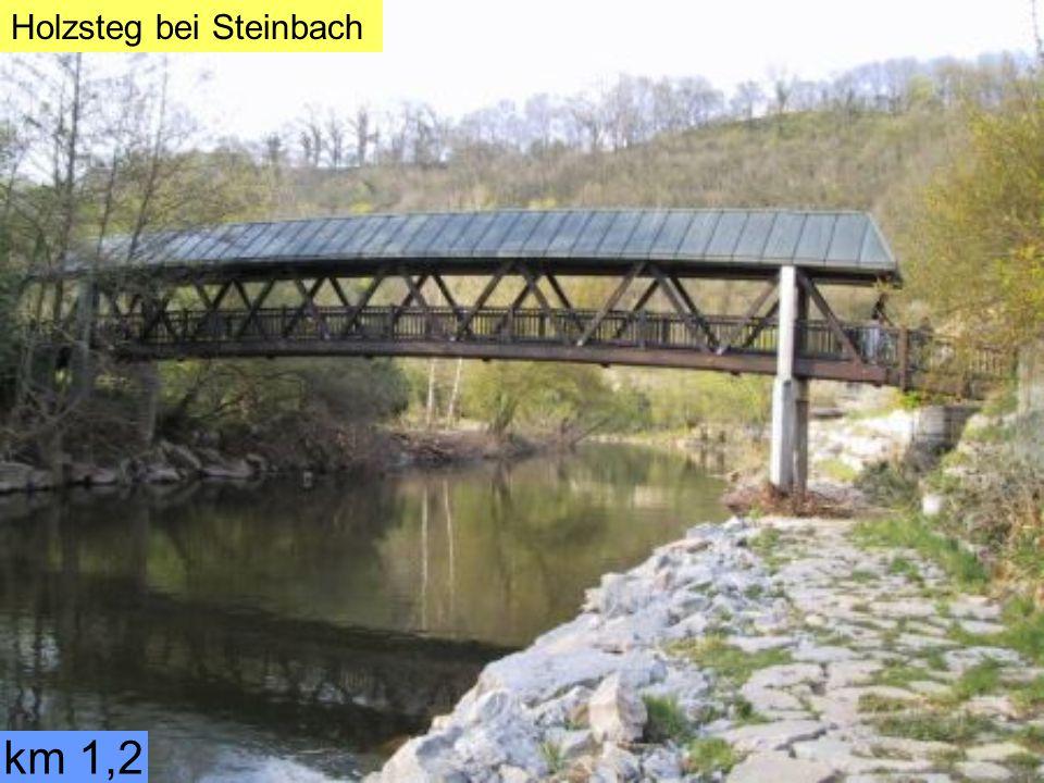 Holzsteg bei Steinbach km 1,2