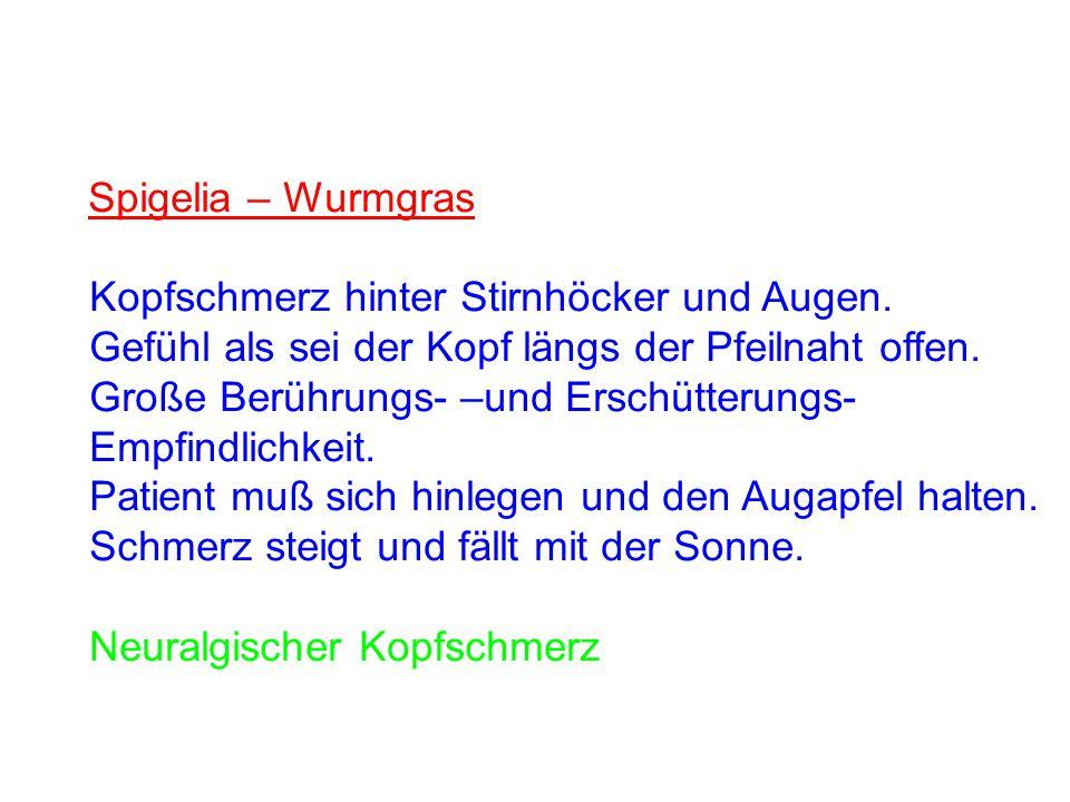 Nux Vomica – Brechnuss Katermittel Kopfschmerzen nach Kaffee, - Tee und Alkoholmißbrauch.