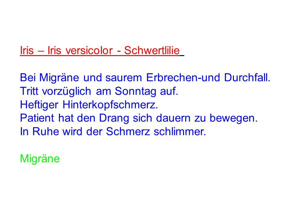 Iris – Iris versicolor - Schwertlilie Bei Migräne und saurem Erbrechen-und Durchfall. Tritt vorzüglich am Sonntag auf. Heftiger Hinterkopfschmerz. Pat
