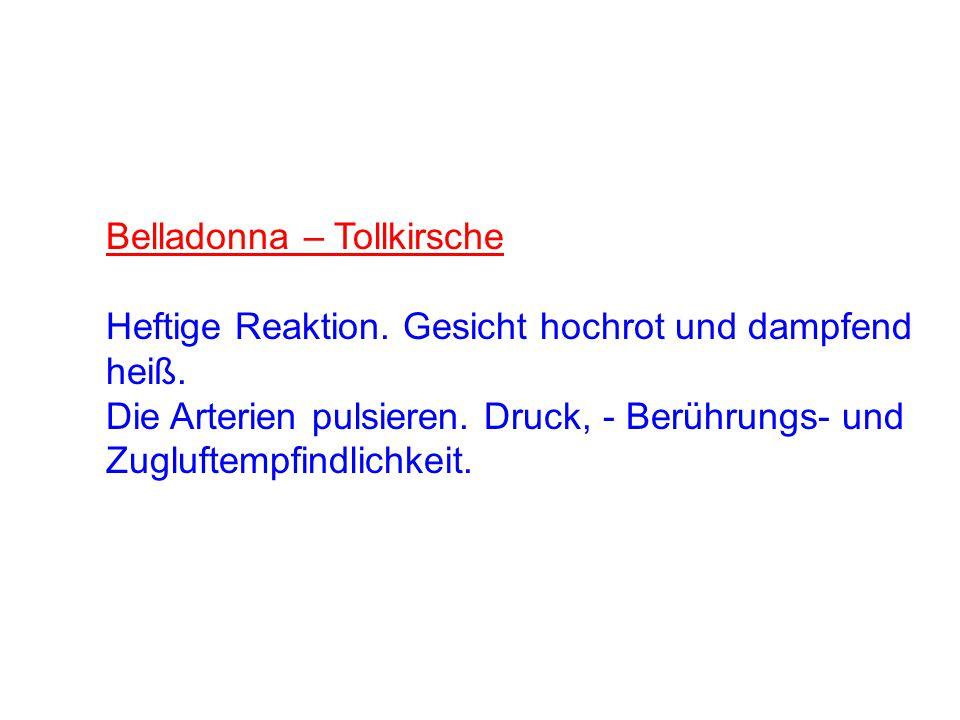 Belladonna – Tollkirsche Heftige Reaktion. Gesicht hochrot und dampfend heiß. Die Arterien pulsieren. Druck, - Berührungs- und Zugluftempfindlichkeit.