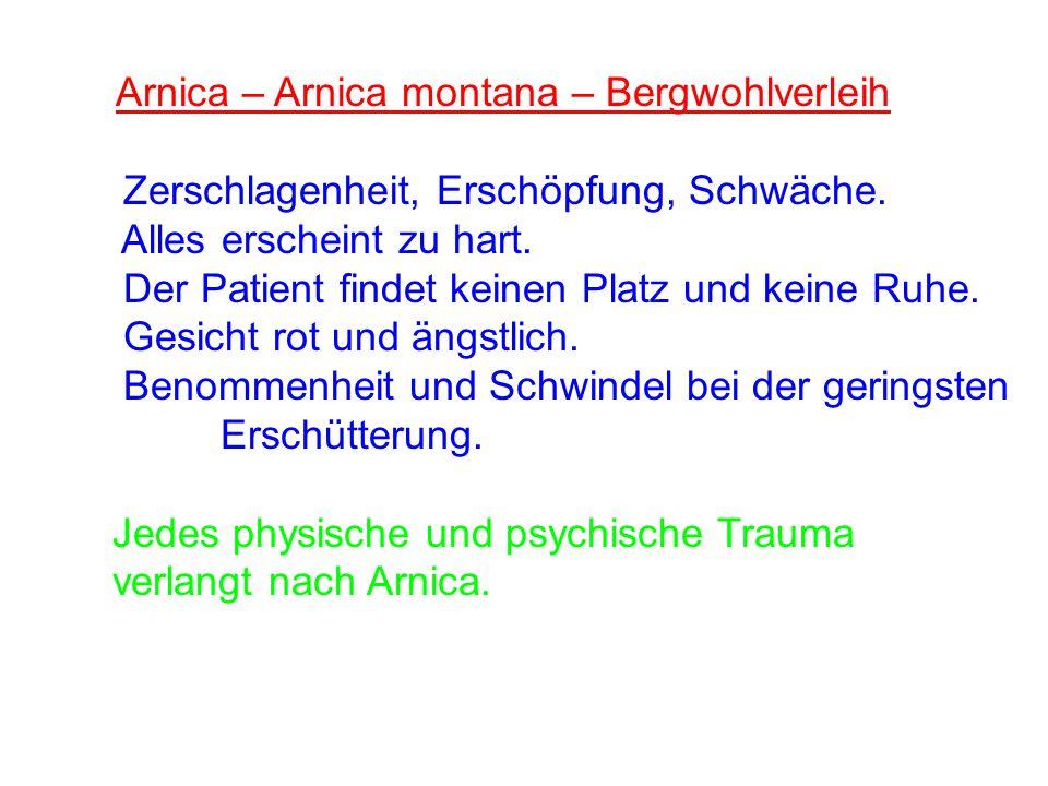 Arnica – Arnica montana – Bergwohlverleih Zerschlagenheit, Erschöpfung, Schwäche. Alles erscheint zu hart. Der Patient findet keinen Platz und keine R