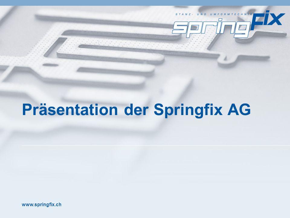 www.springfix.ch Präsentation der Springfix AG