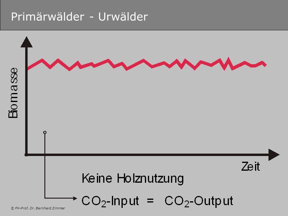 © FH-Prof. Dr. Bernhard Zimmer Primärwälder - Urwälder