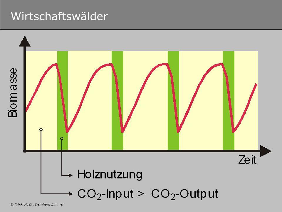 © FH-Prof. Dr. Bernhard Zimmer Wirtschaftswälder