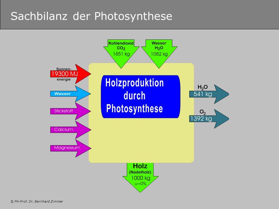 © FH-Prof. Dr. Bernhard Zimmer Sachbilanz der Photosynthese