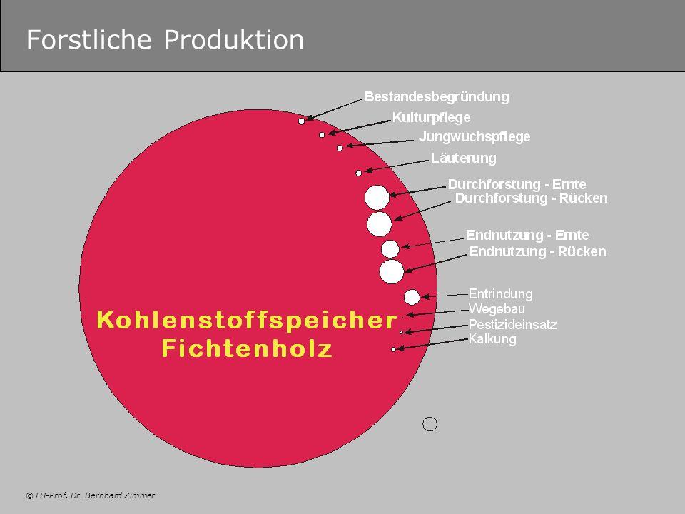 © FH-Prof. Dr. Bernhard Zimmer Forstliche Produktion