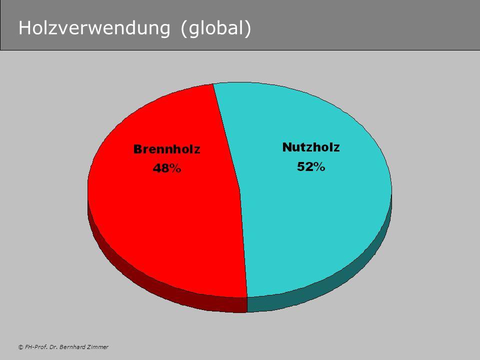 © FH-Prof. Dr. Bernhard Zimmer Holzverwendung (global)