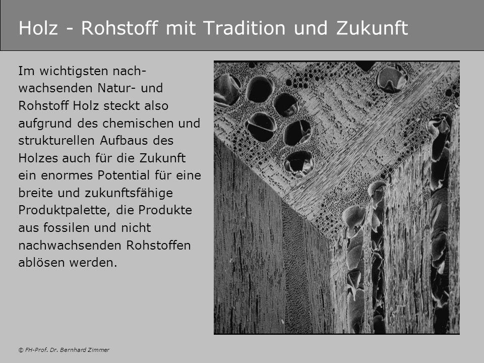 © FH-Prof. Dr. Bernhard Zimmer Holz - Rohstoff mit Tradition und Zukunft Im wichtigsten nach- wachsenden Natur- und Rohstoff Holz steckt also aufgrund