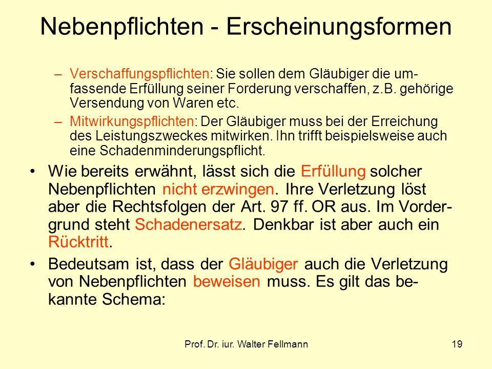 Prof. Dr. iur. Walter Fellmann19 –Verschaffungspflichten: Sie sollen dem Gläubiger die um- fassende Erfüllung seiner Forderung verschaffen, z.B. gehör