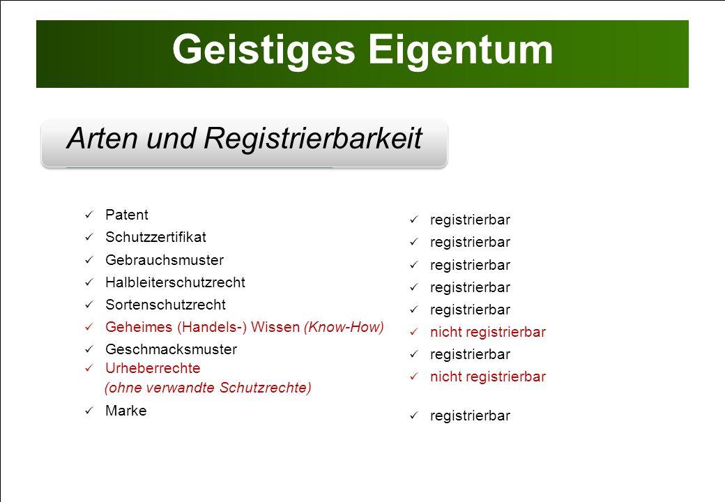 Geistiges Eigentum Registrierbarkeit von IP Industrielles Eigentum Erfindungen gemäß § 1 Abs.