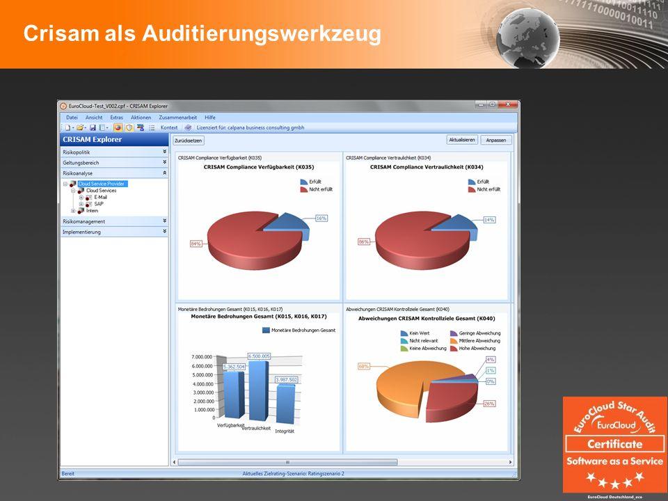 Crisam als Auditierungswerkzeug