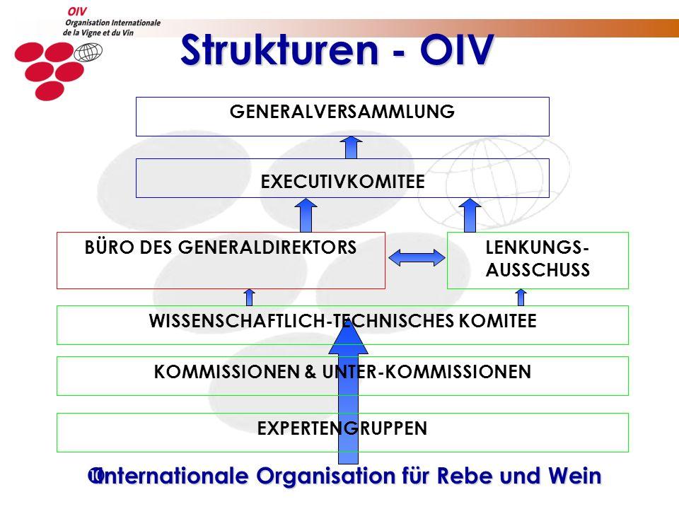 Strukturen - OIV GENERALVERSAMMLUNG EXECUTIVKOMITEE WISSENSCHAFTLICH-TECHNISCHES KOMITEE EXPERTENGRUPPEN KOMMISSIONEN & UNTER-KOMMISSIONEN LENKUNGS- A