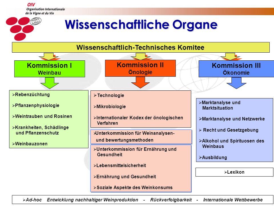Wissenschaftliche Organe Wissenschaftlich-Technisches Komitee Kommission I Weinbau Kommission III Ökonomie Kommission II Önologie Rebenzüchtung Pflanz