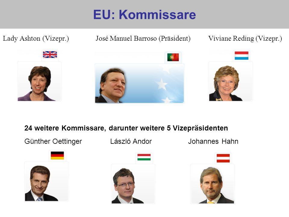 EU: Kommissare Lady Ashton (Vizepr.) José Manuel Barroso (Präsident) Viviane Reding (Vizepr.) 24 weitere Kommissare, darunter weitere 5 Vizepräsidente