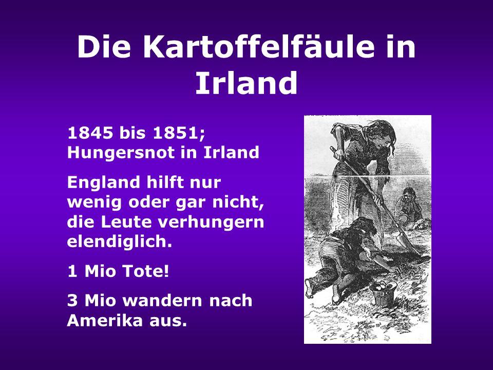 Die Kartoffelfäule 1842 1845 Ursprung; Südamerika 1842; Die Kartoffelfäule vernichtet fast die gesammte Ernte Nordamerikas 1845; Vernichtung der Kartoffelernten in Europa