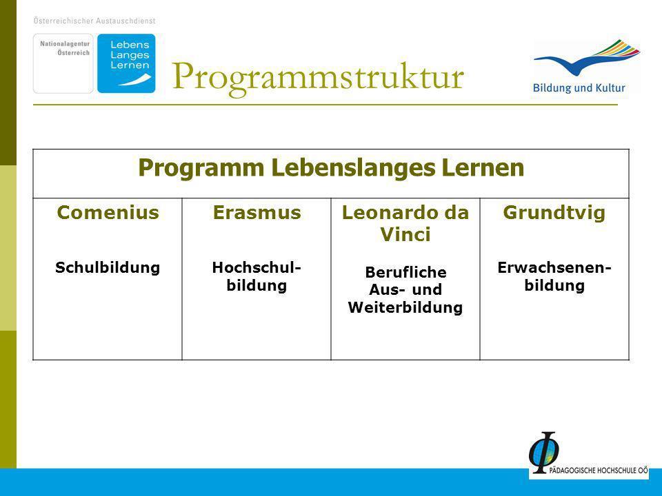 2 Programm Lebenslanges Lernen Comenius Schulbildung Erasmus Hochschul- bildung Leonardo da Vinci Berufliche Aus- und Weiterbildung Grundtvig Erwachsenen- bildung Programmstruktur