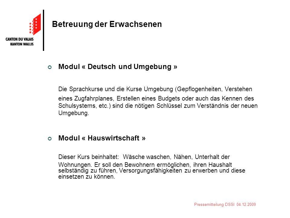 Pressemitteilung DSSI 04.12.2009 Betreuung der Erwachsenen Modul « Deutsch und Umgebung » Die Sprachkurse und die Kurse Umgebung (Gepflogenheiten, Ver