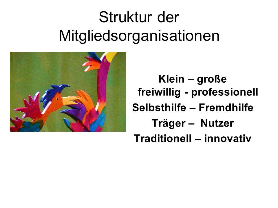 Struktur der Mitgliedsorganisationen Klein – große freiwillig - professionell Selbsthilfe – Fremdhilfe Träger – Nutzer Traditionell – innovativ