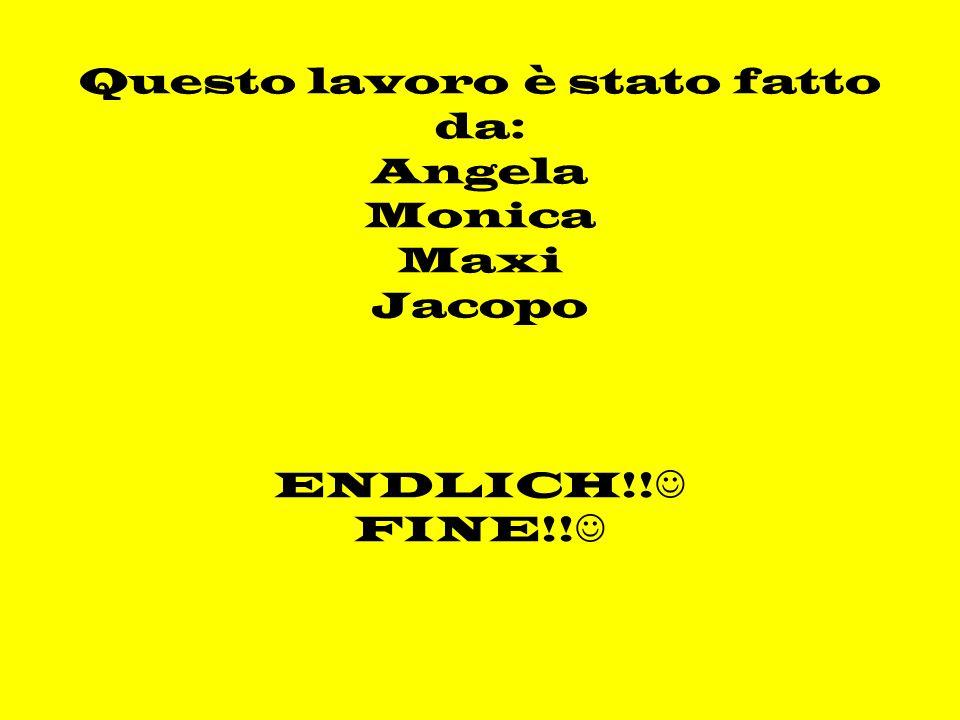 Questo lavoro è stato fatto da: Angela Monica Maxi Jacopo ENDLICH!! FINE!!